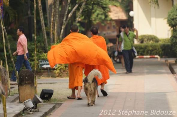 chiang mai018