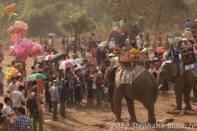 elefantasia182