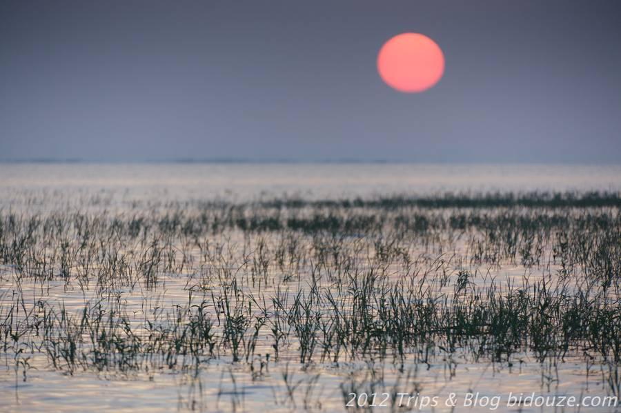 Le lac de Bung Boraphet