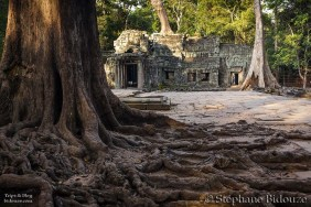 Angkor day 4 10