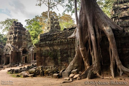 Angkor part V: The Stars