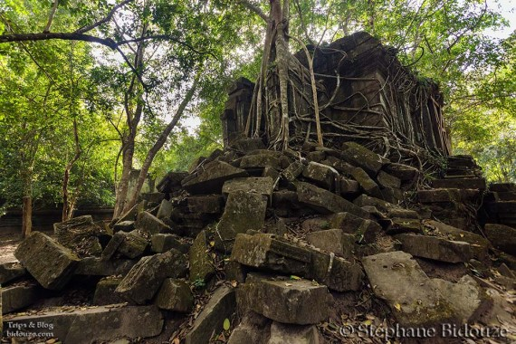 Temple ruins in jungle