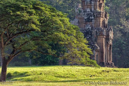Angkor Thom park