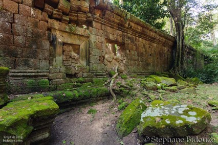 Angkor antique wall