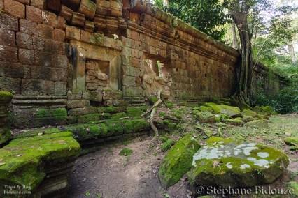 Angkor antique wall