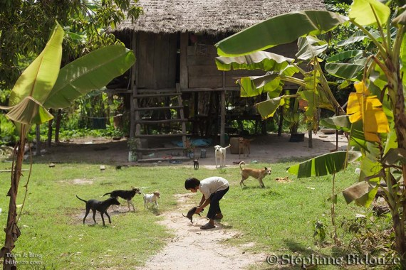cambodge campagne 22