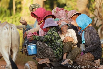 cambodge campagne 42
