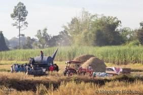 machine-riz-égrainer