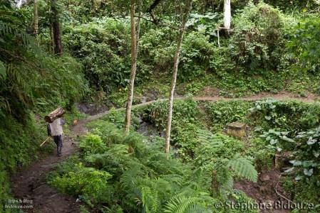 ifugao-man-carrying-wood