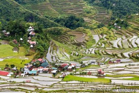 batad-paysage-rizieres-philippines