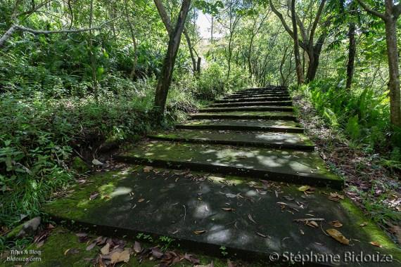 escaliers-volcan-vieux-camiguin