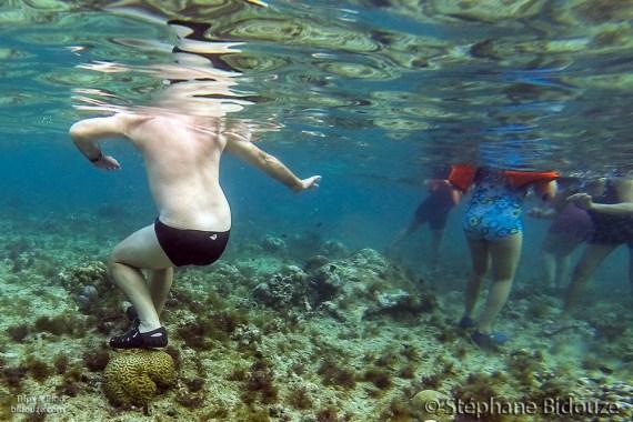 coral-touriste-destruction-philippines