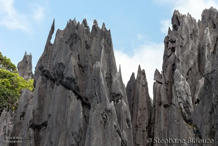 rochers-calcaire-el-nido-palawan