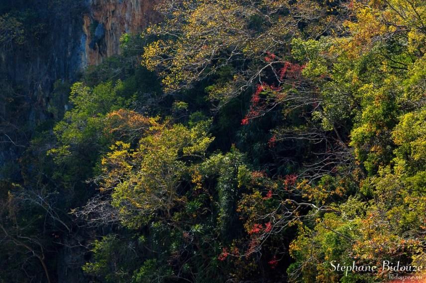 hiver-saison-seche-phang-nga-thailande
