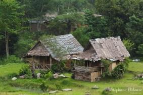 Mae-Klang-Luang-maison-palmier