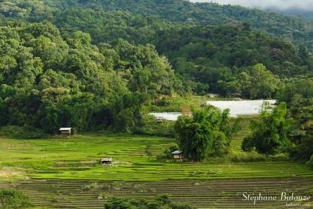 Le village Karen de Mae Klang Luang (Chiang Mai)