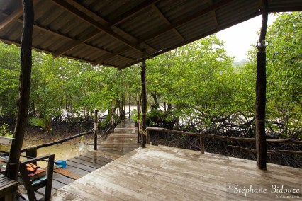 ko-kut-mangrove-guesthouse