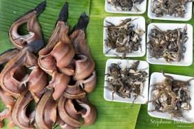 poisson-grenouille-marché-thailande-cuisine