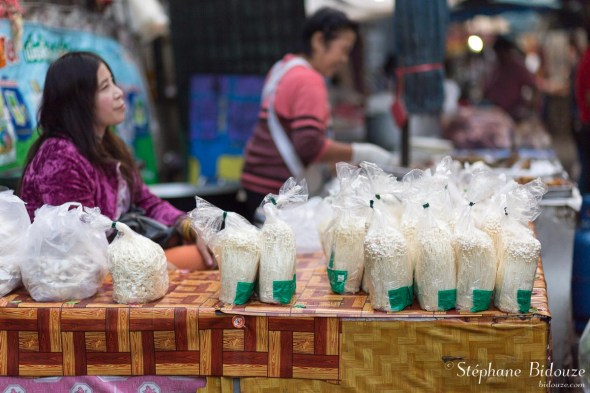 vendeuse-champignon-thailande-chiang-mai