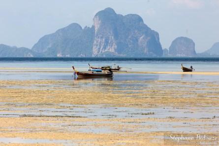 L'ile de Koh Mook (Muk), province de Trang