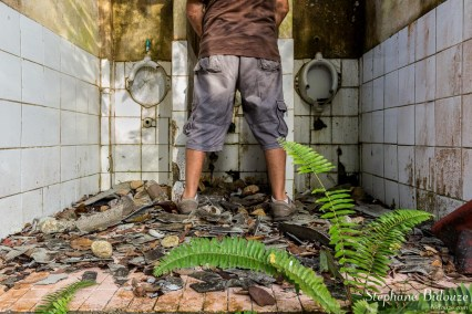 trang-toilettes-jungle-ruines