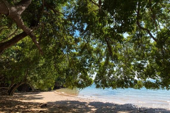 bord-mer-thailande-trang