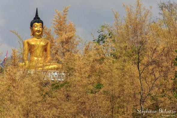 Wat-Tham- Khiritham-statue-bouddha-bambou