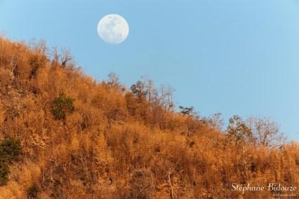 lune-bambou-colline-soleil