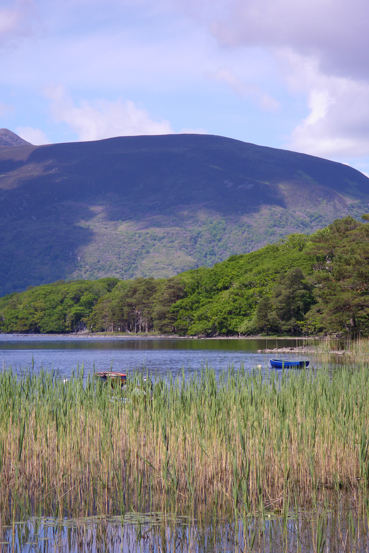 KILLARNEY-NATIONAL-PARK-IRLANDE-2