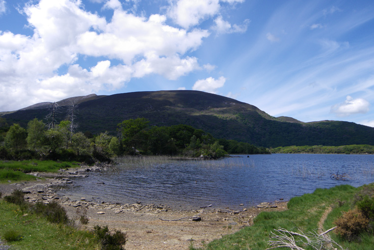 KILLARNEY-NATIONAL-PARK-IRLANDE-7
