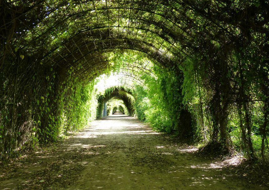 Parc du palais de compiegne - Roseraies