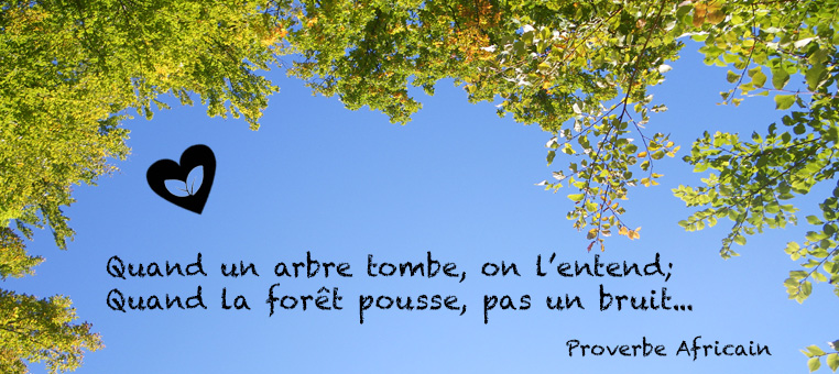 citation-arbre