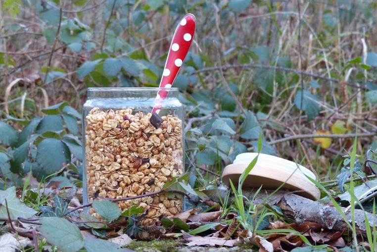 Céréal-fait-maison-au-sucre-de-coco-3
