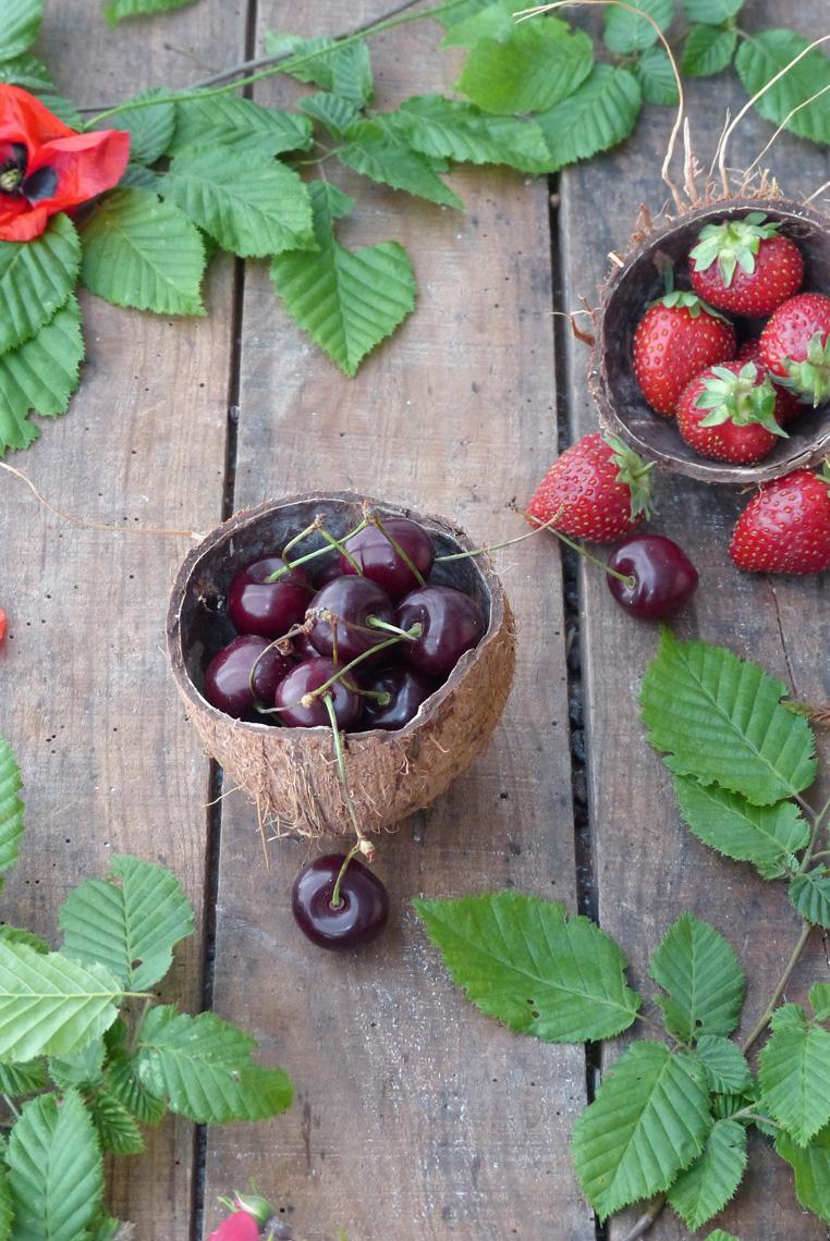 Mini-pie-aux-fruit-rouge-anniv-Bidule-et-Cocotte-fruits
