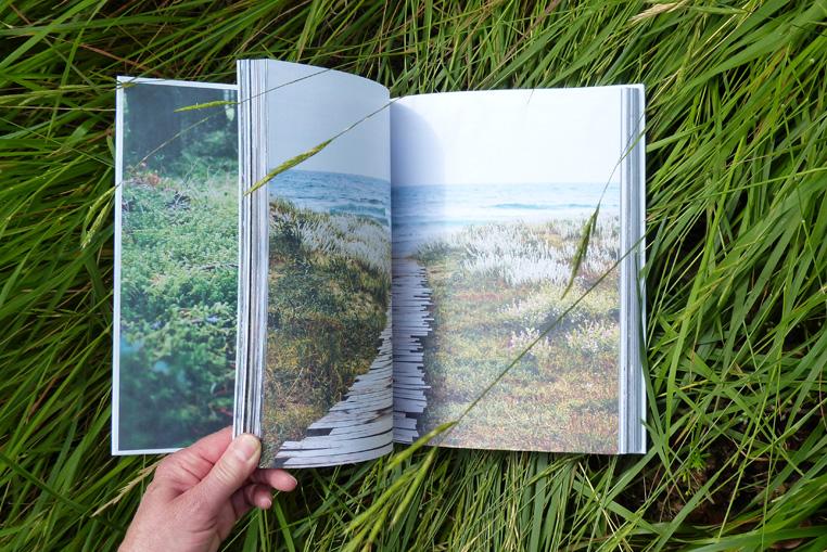 Livre-Nature-DIY-d'Anna-Carlile-6
