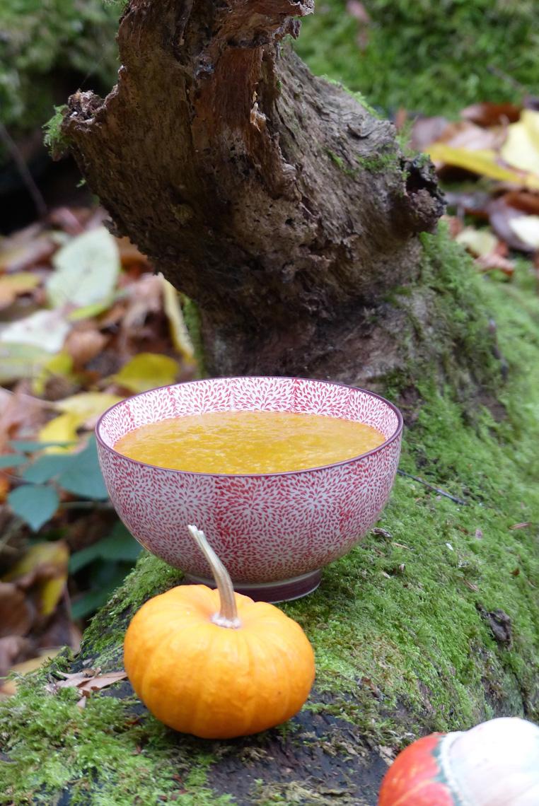 soupe-au-potiron-1