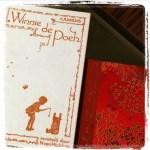Perfecte moeder - Aimee Molloy #boekenweek