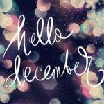Wrap-up november