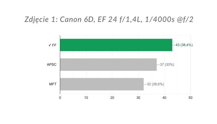 Zdjęcie 1: wyniki ankiety.