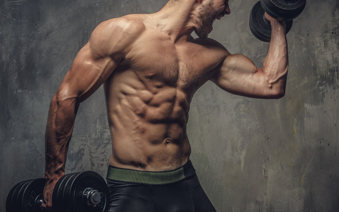 Lightweights or Heavyweights, which is Better for Optimum Muscle Gain?