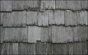 architecte-lille-article035