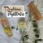 Ma routine capillaire – bio exclusivement