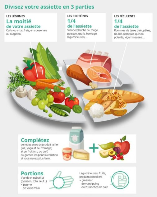 l'assiette idéale : gage de réussite d'un rééquilibrage alimentaire