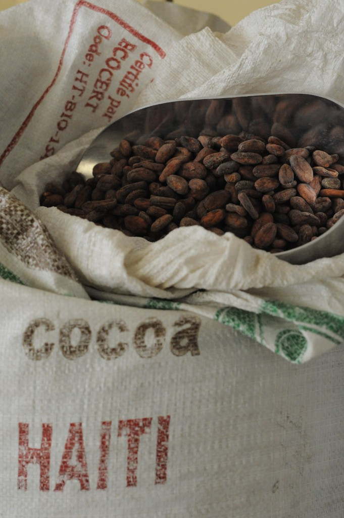 Cacao, business, economic development