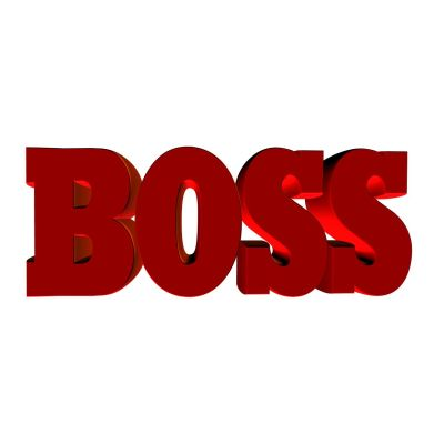 6 Reasons Why You Need to Live Your 1804 Boss Story