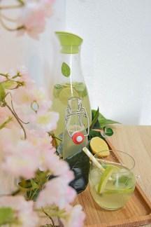 sommerdrink_drink_limette_basilikum-13