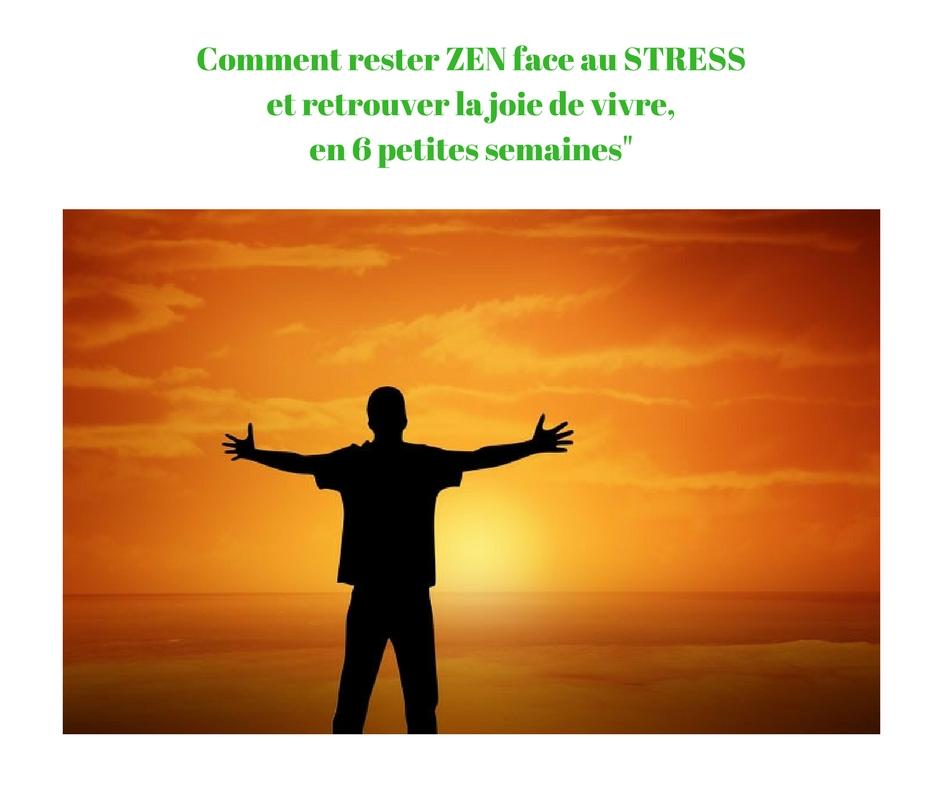 Comment rester ZEN face au STRESS et retrouver la joie de vivre, en 6 petites semaines