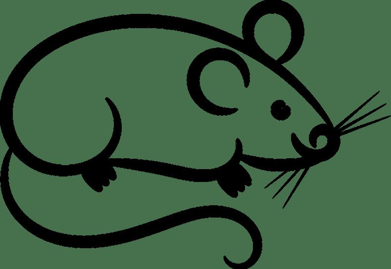 une souris conte les deux souris