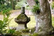 zen liberté esprit
