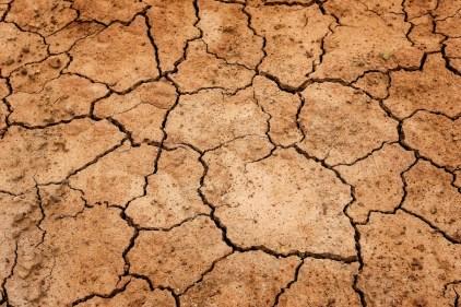 secheresse climat cause externe de la maladie